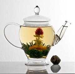 amaranth blooming tea in glass pot (ixchelbunny) Tags: green art globe arty tea flowering amaranth blooming
