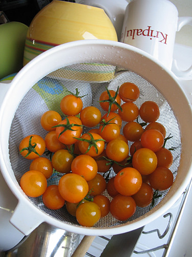 Just-Picked Sungold Tomatoes