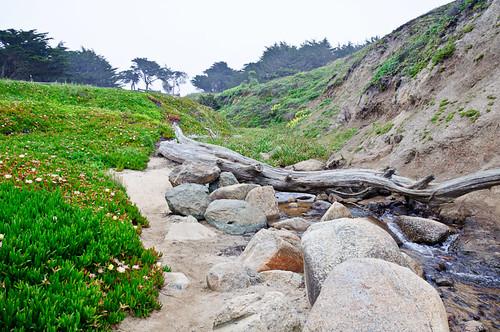 1106-SF&Monterey-2561