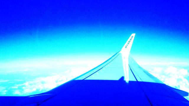 wing1edit