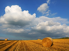 Summer clouds (RainerSchuetz) Tags: field clouds harvest explore stubblefield explored baleofstraw blinkagain bestofblinkwinners