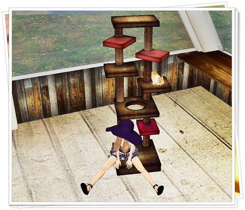BP* mini cat tower-test type OPEN me!