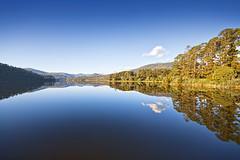 Maroondah Reservoir (Jesper Blow) Tags: park blue sky reflection tree water canon reflections day oz dam sigma australia victoria clear yarravalley valley yarra vic aussie 1020mm albertpark 50d maroondahreservoir