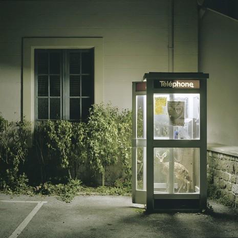 """""""Untitled (Entre Chien et Loup)"""" (2009-2010)"""