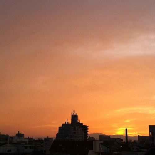 今日の写真 No.352 – 昨日Instagramへ投稿した写真(3枚)/iPhone4+Camera+