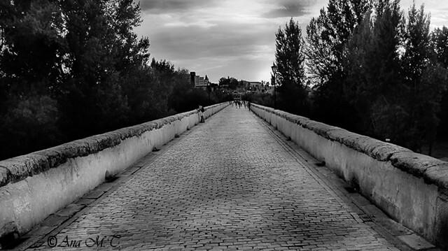 IMG_0460_Salamanca 3 BN