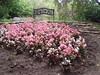 P8220076 (Mr. Happy Face - Peace :)) Tags: arboretum garden flowers alberta canada nature beautiful colors bench emptyseat hbm benchmonday