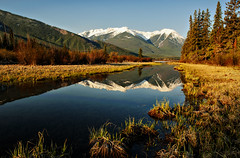 Golden Morning in Banff (Jeff Clow) Tags: morning nature landscape golden banff albertacanada banffnationalpark canadianrockies