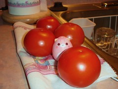Fruit . . . or Vegetable? (Ayla160 >^..^<) Tags: pink cute cat tomato toy japanese kitten doll little shaped small tomatoes egg peach kitty tiny kawaii meow awake tumble openeyes cubeworks swingsmeows