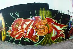 Hell Hath No Fury (knight owls) Tags: man art modern graffiti artwork snake sade graf darth dna vader graff must 805 splat hustle creepin