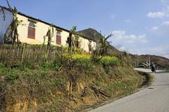 73_LAO75830096 (TC Yuen) Tags: vietnam sapa hmong terracefarming locai