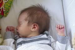 Sleeping (Jane Goth) Tags: baby emily 2weeks 14days