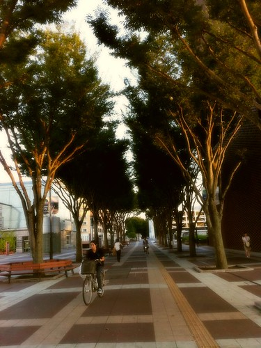Girl cycling past trees at Tsukuba Center