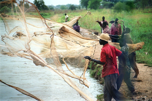 Small-scale fisheries in Africa, photo by Chris Bene, 2003