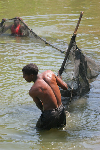Farming fish in Malawi. Photo by Stevie Mann, 2007.