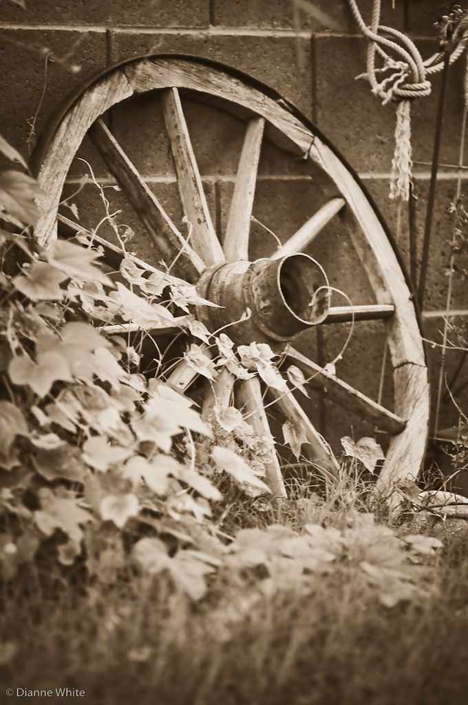 Wheels and weeds