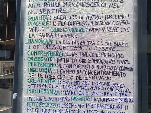Timideza sul muro by durishti