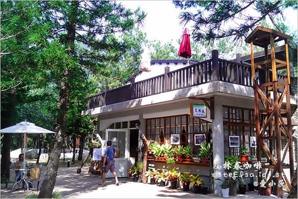 【澎湖 】在森林裡享受涼夏海風@林投公園.及林春咖啡館