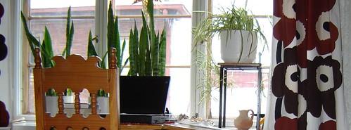 työhuoneen kukat 2005 by Anna Amnell