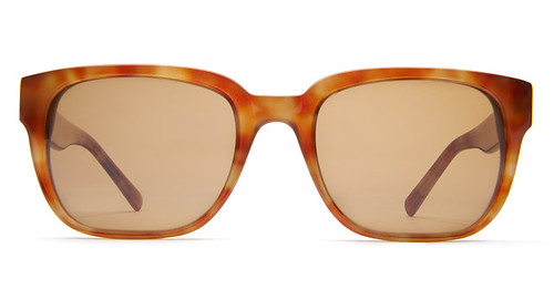 Spencer Sunglasses in Blonde Tortoise - Warby Parker - Mozilla Firefox 8162011 112957 AM.bmp