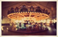 Santa Monica Pier Carousel (isayx3) Tags: california santa horse film vintage out typography nikon focus ride bokeh grain sigma carousel retro monica studios tones f28 d3 peir oof 14mm plainjoe isayx3 plainjoephotoblogcom