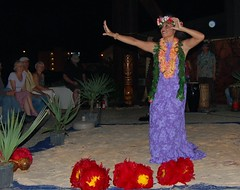 Leilani Hula Dancing Under Full Moon (StFrancis2) Tags: cats wow luau bow meow 2011