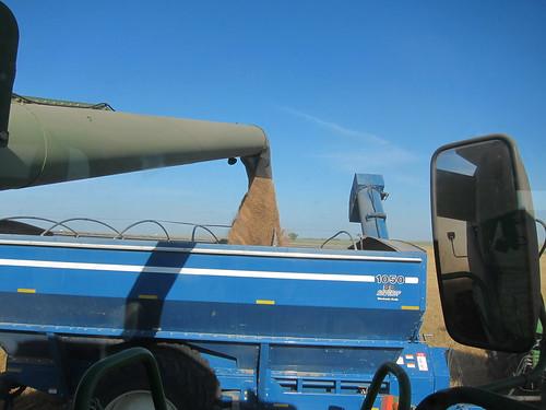 Grain cart 3