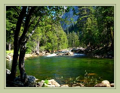 Toulumne  River flows   through  the  Toulumne  Meadows  in  Yosemite National Park (Bob the Real Deal) Tags: california nature forest landscape yosemite yosemitenationalpark tuolumneriver