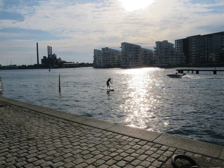 Copenhagen surfer dude