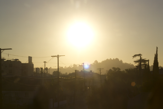 good morning LA