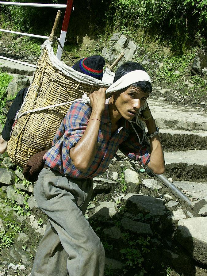Носильщик паломников. Кедарнатх