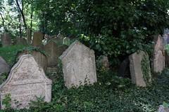 "Old Jewish Cemetery (Starý židovský hřbitov), Prague (Prag/Praha) • <a style=""font-size:0.8em;"" href=""http://www.flickr.com/photos/23564737@N07/6082633613/"" target=""_blank"">View on Flickr</a>"