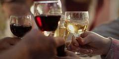 Mendoza: Presentarán Anuario de Bodegas y Vinos de Argentina en la Feria del Libro