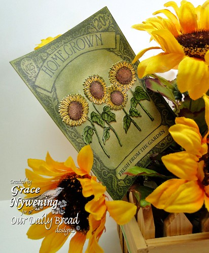 sunflower-arr-seed-pack-pic
