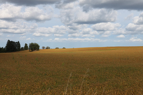 The Ontario landscape is sublime.