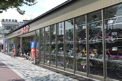 Asahi Cycle