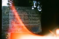 The Felled Tree - Lobau (hedbavny) Tags: tree film nature analog 35mm lomo lomography natur toycamera diana analogue baum plasticcamera felled cutdown gefllt naturschutz lobau wienvienna sterreichaustria farbfilm dechantlacke dianamini internationalyearofforests jahrdeswaldes