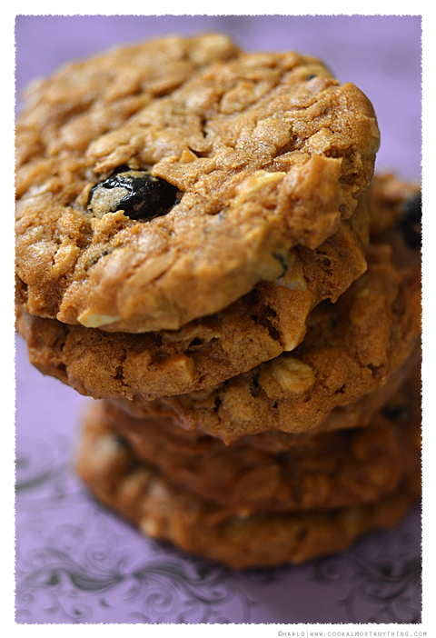 Dried Blueberry and Oat Cookies© by Haalo