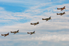 Spitfire Gathering.. (mickb6265) Tags: battleofbritain supermarinespitfire rollsroycemerlin ouv fightercommand thegracespitfire duxfordairshow2011
