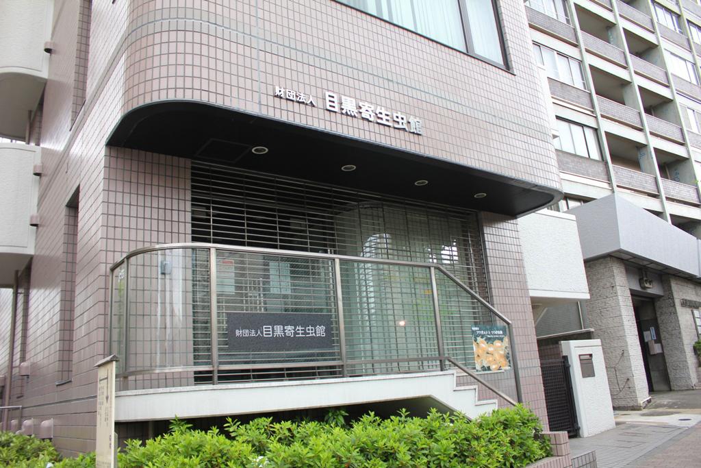 Meguro Walking Guide (8)
