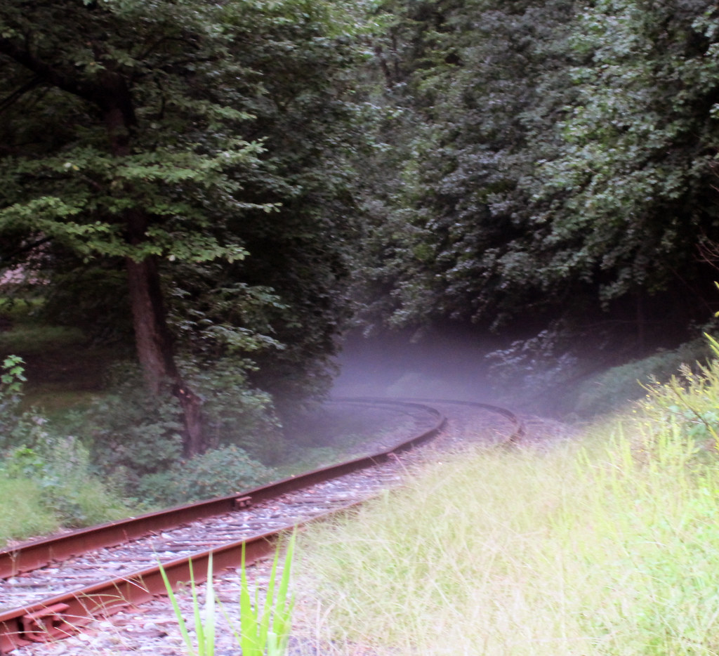 Mist on the Railroad