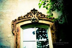 Window (jenniferbradleydesign*) Tags: reflection window savannah aged ornate anglesanglesangles historicsavannahgeorgia