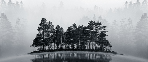 Misty Lake II BW