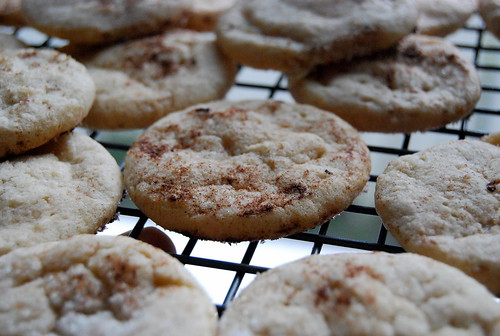 Cinnamon-Nut Spice Cookies