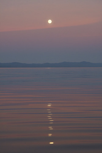 A Painted Moon over the Salish Sea