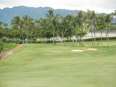WAIKELE COUNTRY CLUB 116
