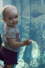 Alannah #1 (Craig Dyni) Tags: baby girl zoo toledozoo madelyn alannah dyni