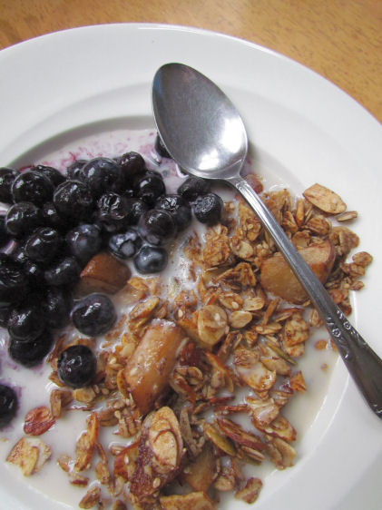 Homemade Granola Cereal with Blueberries