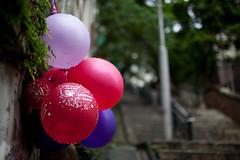 Happy Birthday (pamhule) Tags: 35mm hongkong 5d 香港 佳能 35mmf14 35mm14 5dmarkii 5dii pamhule jensschott jensschottknudsen canoneosseries 佳能eos系列的