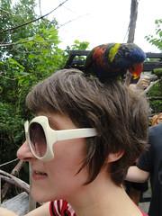 8/6/11 - Cincinnati Zoo: Me (mavra_chang) Tags: me birds animals parrots lorikeets greennapedlorikeets